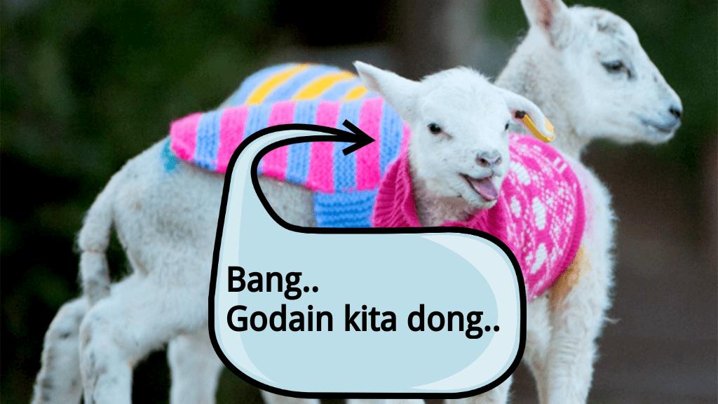 godain-kambing